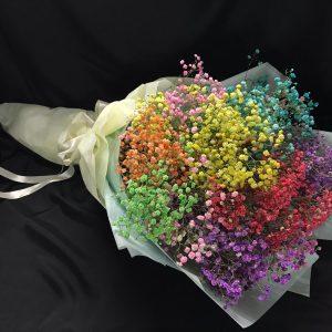 Rainbow Promise (FB06)
