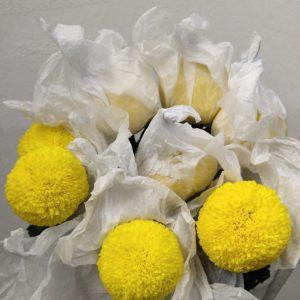 MACH004 Chrysanthemum  Ping Pong 12 STKS [MA]