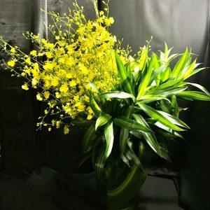 Yellow Heart (FB16)