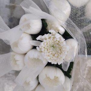 MACH002 Chrysanthemum Netting 12 STKS [MA]
